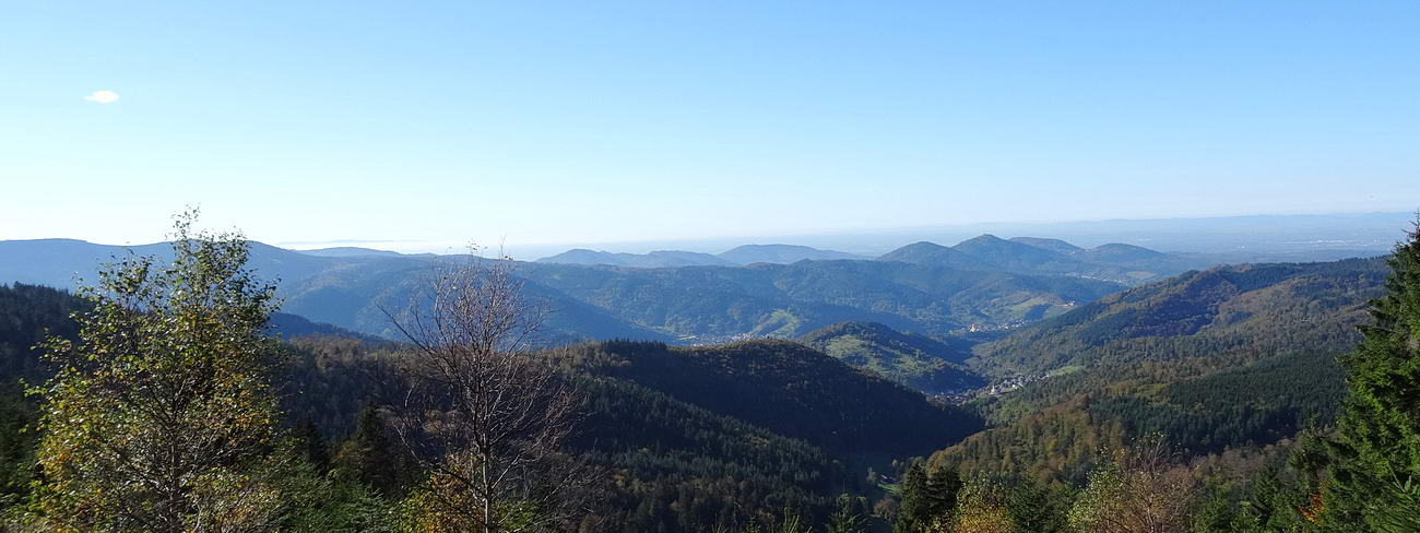 View of the black forest mountains