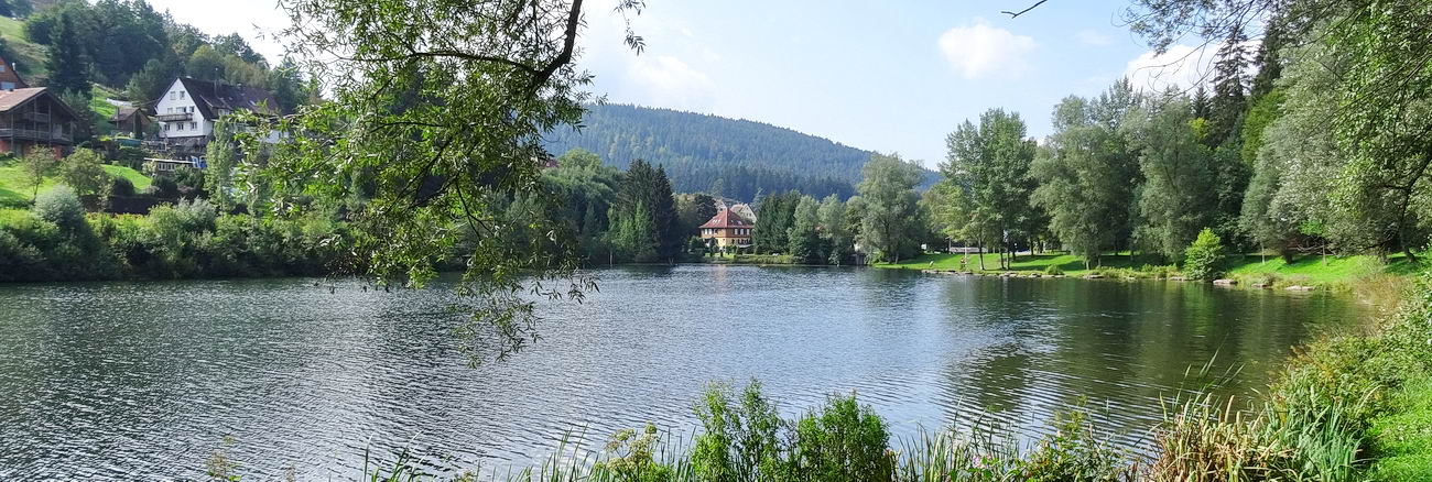 Erzgrube, reservoir of the river Nagold