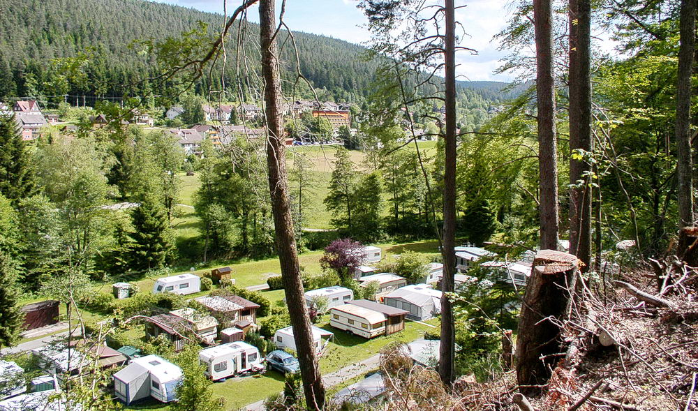 Caravan area of Campsite Müllerwiese