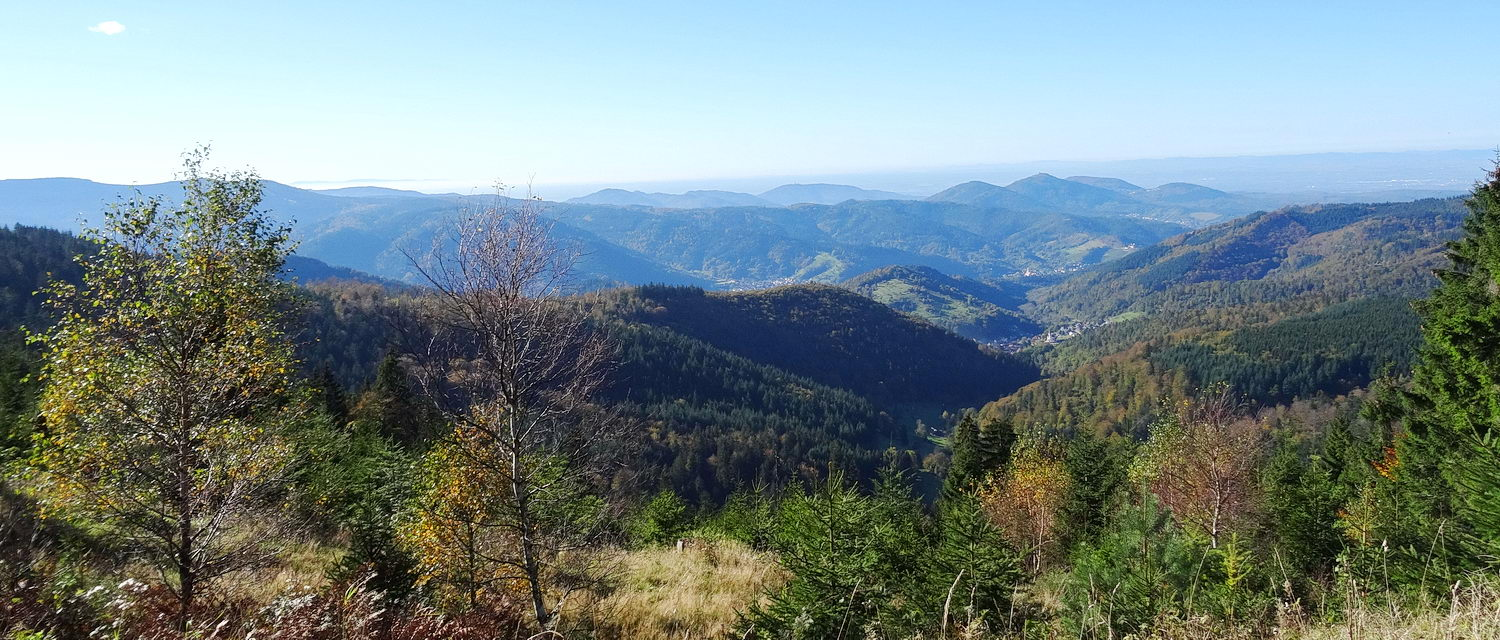 Mountains of the Black Forest