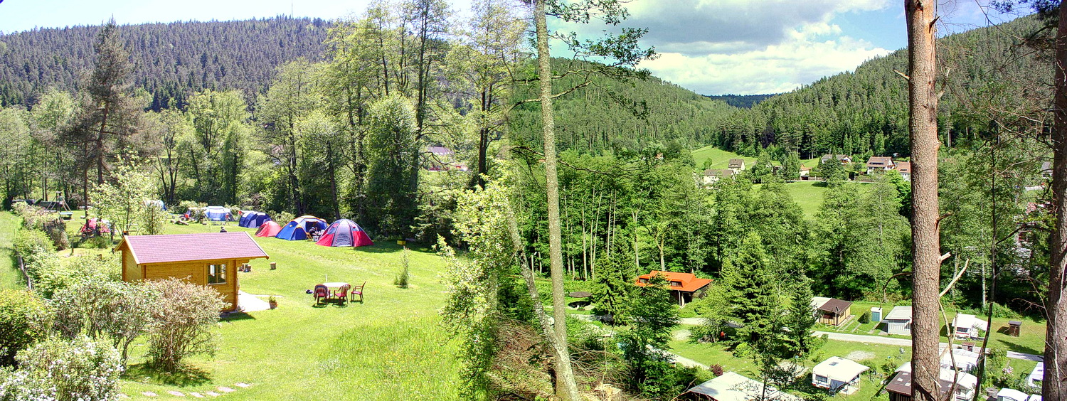 Black Forest campsite Müllerwiese